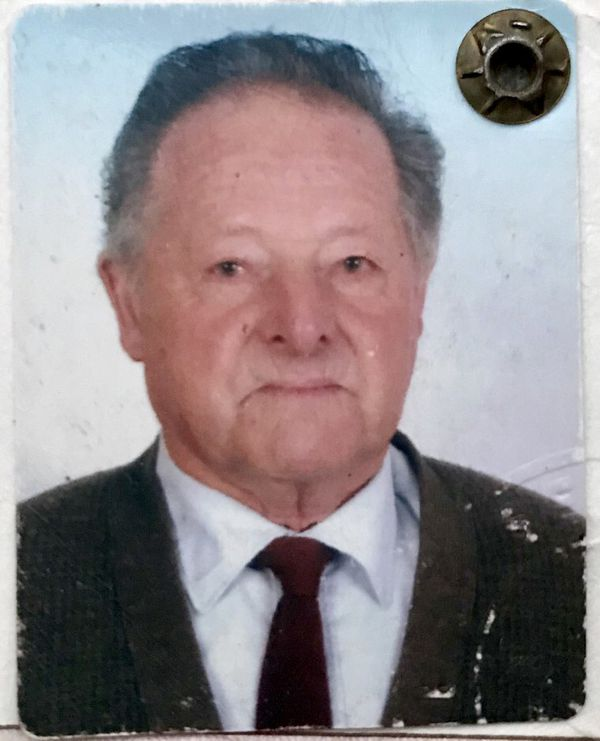 Luigi Albani