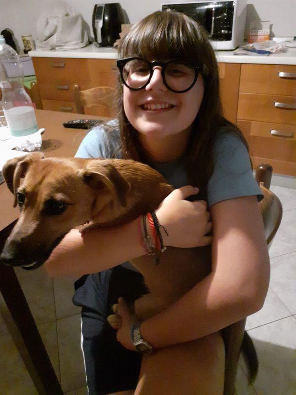 Vanessa Andreula